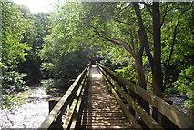 SE3258 : Footbridge across the River Nidd by N Chadwick