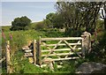 SX5384 : Gate near Doe Tor Farm by Derek Harper
