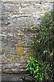 SP2925 : Benchmark on Boulter's Barn Cottage by Roger Templeman