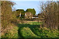 TQ4765 : Track in field beside Chelsfield Lane by David Martin