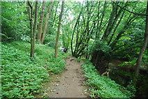 SE3357 : Footpath by the River Nidd by N Chadwick