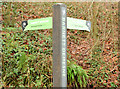 J3268 : Fingerpost towpath sign, Belfast - December 2014(2) by Albert Bridge