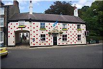 SE3457 : Polka Dot House by N Chadwick