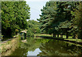 SJ9380 : Macclesfield Canal south of Wood Lanes, Cheshire by Roger  Kidd