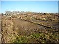 SU0571 : Disused runway, former RAF Yatesbury air base by Vieve Forward