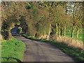 SJ8565 : Autumn afternoon, Smithy Lane, Hulme Walfield near Congleton by Colin Park