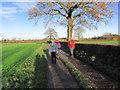 SJ8258 : Walkers heading towards Moor's Farm near Scholar Green by Colin Park