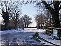 SK4322 : Old Gelscoe Lane access to The Walnut Yard by Ian Calderwood