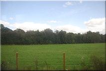 SE3356 : By the Harrogate line by N Chadwick
