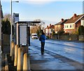 SJ9596 : Newton Library Bus Stop by Gerald England