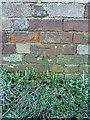 SJ5703 : OS benchmark - Cressage House Farm by Richard Law