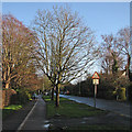 TL4357 : Barton Road on a January afternoon by John Sutton