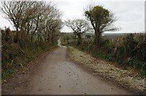 SW8954 : Country road near Goonabarn by Philip Halling