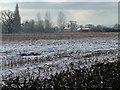 SJ4760 : Snowy stubble field, north of Gatesheath Hall by Christine Johnstone