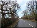 SJ4764 : Guy Lane, heading west by Christine Johnstone