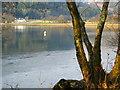 NR8467 : Head of West Loch Tarbert : Week 3