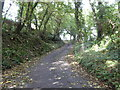 SW8751 : Road leading up from the ford between Penhale and Boswiddle by Rod Allday