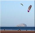 NT6579 : Kite landboarders at Belhaven Bay : Week 4