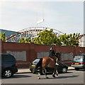 SD3033 : Horserider on Bond Street by Gerald England