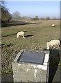 ST6758 : Toposcopic sheepfield by Neil Owen