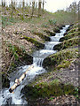 SD5907 : Stepped waterfall on Yellow Brook, Bottling Wood by Gary Rogers