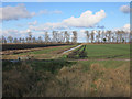 TL2288 : Arable farming, Holme Fen by Hugh Venables