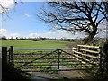 SX3273 : Field near Trefinnick by Derek Harper