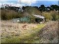 SJ8180 : Old Farm Building, Saltersley Moss by David Dixon