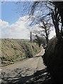 SX3075 : Road to Coad's Green by Derek Harper