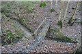 TQ1937 : Sussex Border Path crosses Higham Gill, Horsegills Wood by N Chadwick