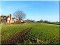 SP8224 : Pasture, Dunton by Andrew Smith