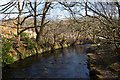 SD7211 : Eagley Brook from the footbridge by Ian Greig