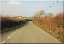 SX2693 : Lane near Maxworthy Cross by Derek Harper
