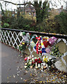 SP3165 : Remembering Pawel, York Bridge on the River Leam, Leamington by Robin Stott