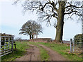 SP8904 : Farm track off Kings Lane by Robin Webster