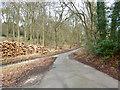 SP8505 : Lane junction and wood stack, Fugsdon Wood by Robin Webster