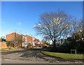 SP7408 : The Gables, Haddenham by Des Blenkinsopp