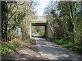 SU9299 : Railway bridge over Chalk Lane by David Purchase