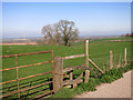 SP7615 : Footpath at Coney Hill Farm by Des Blenkinsopp