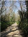 SX3479 : Lane to Penscombe Cross by Derek Harper