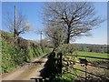 SX3580 : Tamar Valley Discovery Trail near Roundhill Cottages by Derek Harper