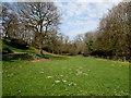 ST0594 : Dried-up molehills in Clydach Park, Ynysybwl by Jaggery