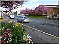 H4572 : Dublin Road, Omagh : Week 17
