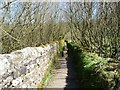 """SE0733 : """"Take a walled path around the head of the reservoir"""" by Christine Johnstone"""