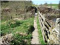 SE0733 : Approaching the footbridge over Denholme Beck by Christine Johnstone