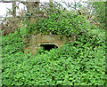 TF7336 : WW1 air raid shelter overgrown with nettles by Evelyn Simak
