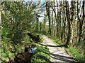 SX0556 : Path beside the Fowey Consols Leat by Gareth James