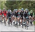 NZ7805 : Team Sky head the peloton : Week 17