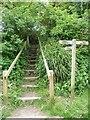 SU8503 : Chichester Ship Canal - Footpath steps by Rob Farrow