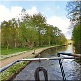 SJ9397 : Peak Forest Canal by Gerald England